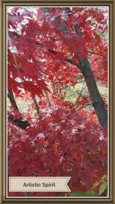 Autumn's Shelter