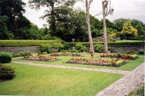 Rear garden at Muckross House