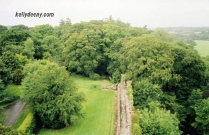 Photo taken in 2004 from atop Blarney Castle - NOT my ancestors' home.
